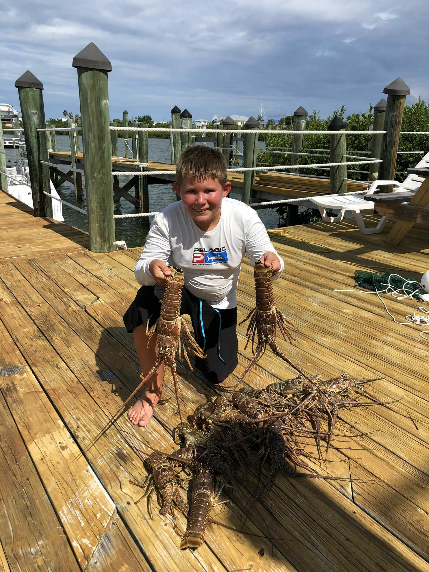 Spiny Lobster Florida Keys
