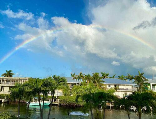 Palm Villa Vacation Update – Frank and Karen Smith